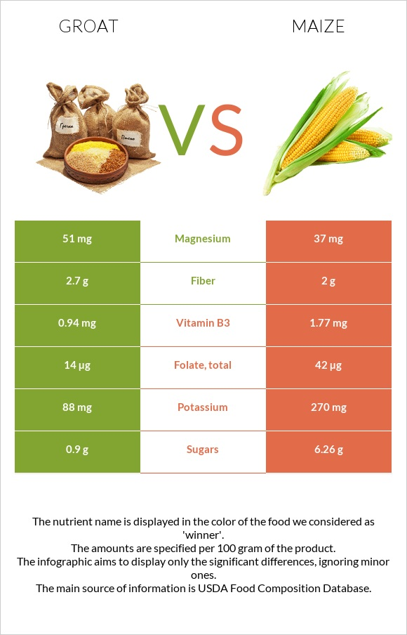 Groat vs Maize infographic