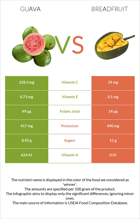 Guava vs Breadfruit infographic