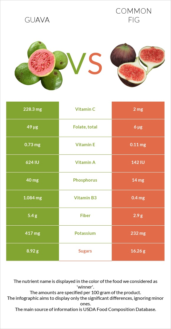 Guava vs Common fig infographic