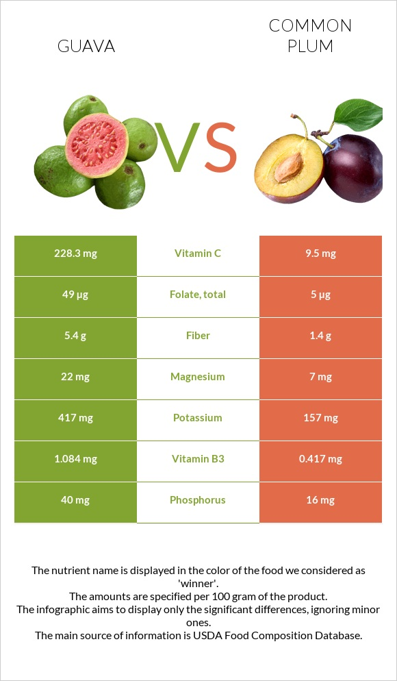 Guava vs Common plum infographic