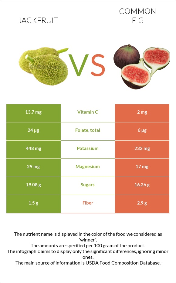Jackfruit vs Common fig infographic