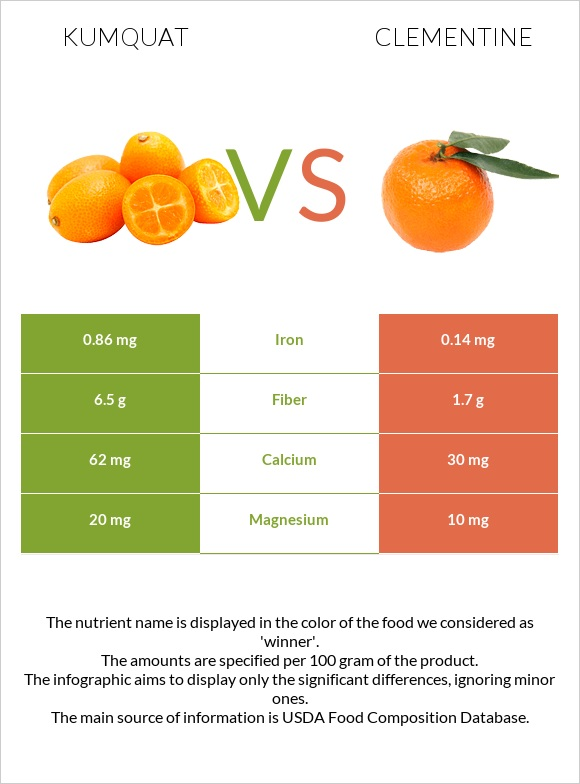 Kumquat vs Clementine infographic