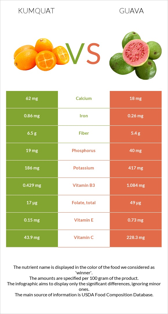 Kumquat vs Guava infographic