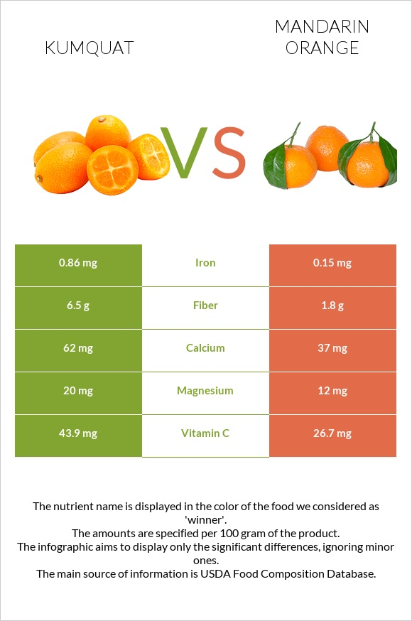 Kumquat vs Mandarin orange infographic