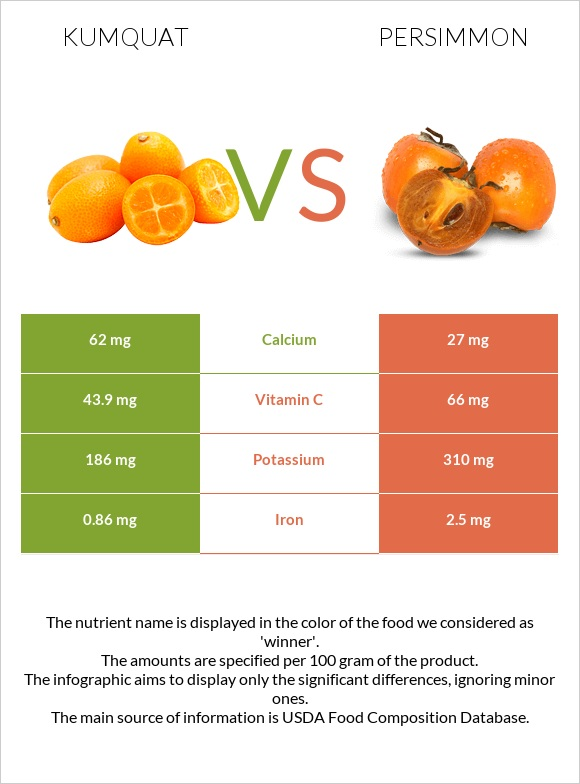 Kumquat vs Persimmon infographic