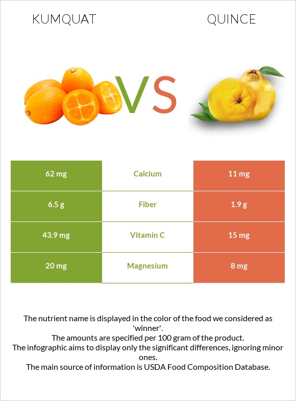 Kumquat vs Quince infographic