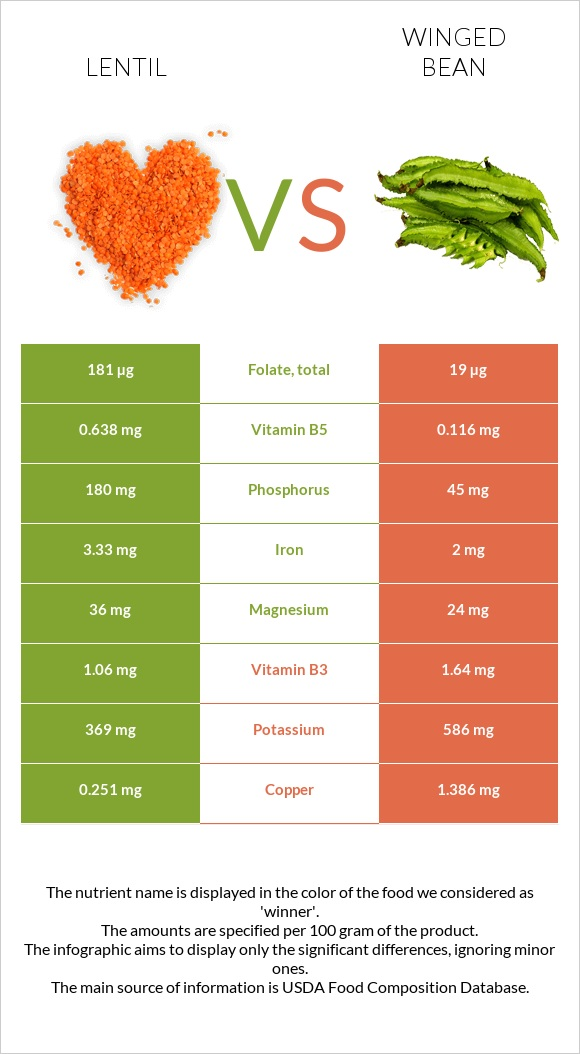 Lentil vs Winged bean infographic