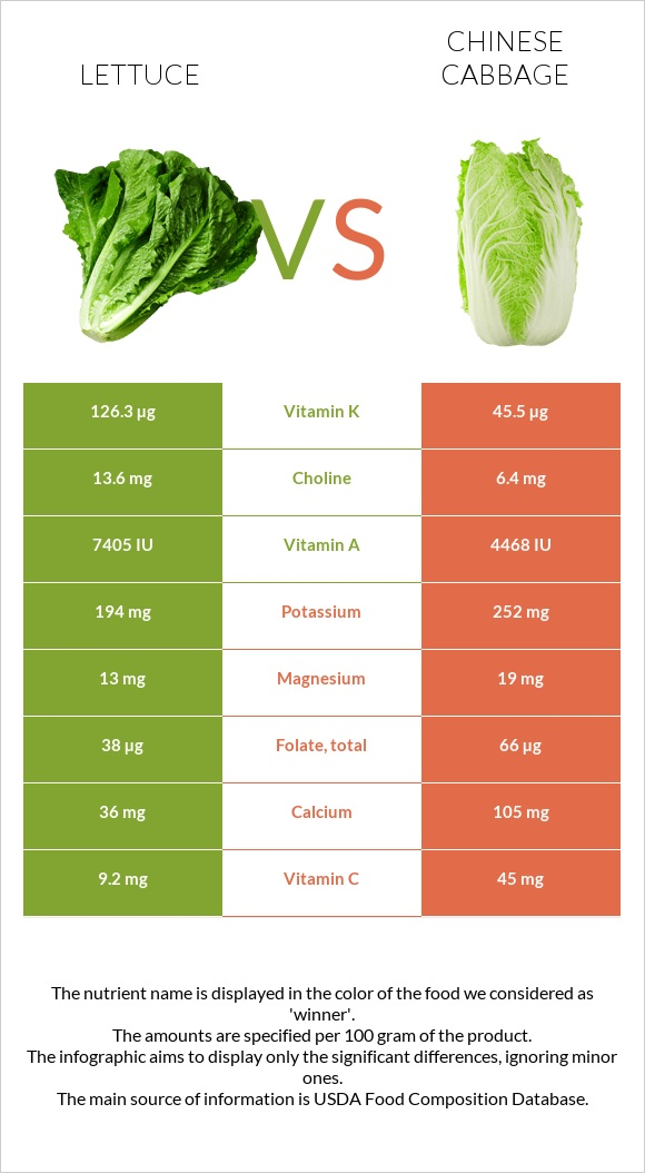 Lettuce vs Chinese cabbage infographic