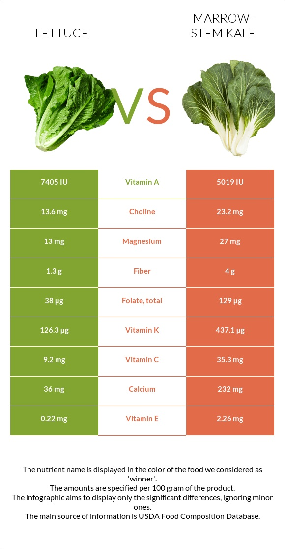 Lettuce vs Marrow-stem Kale infographic