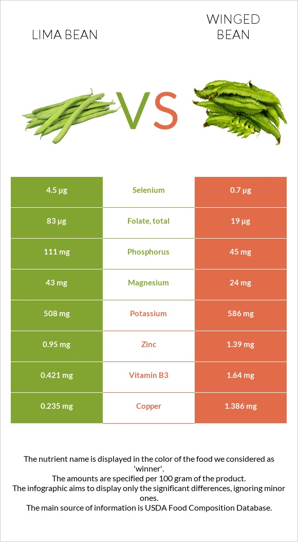 Lima bean vs Winged bean infographic