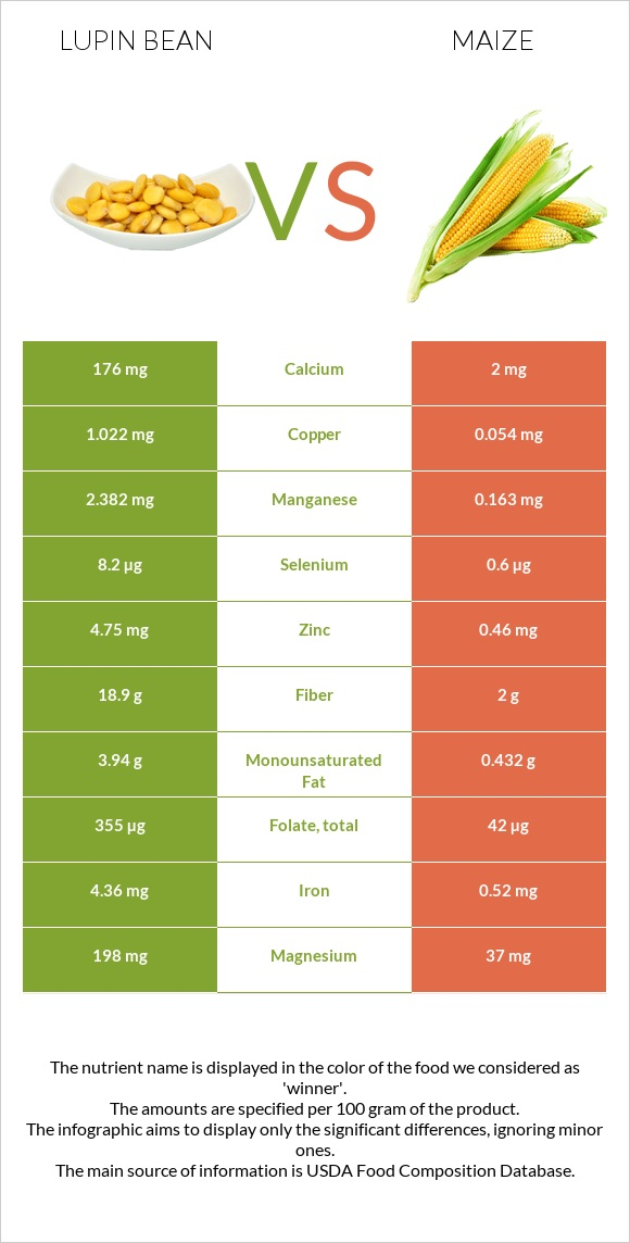 Lupin Bean vs Maize infographic