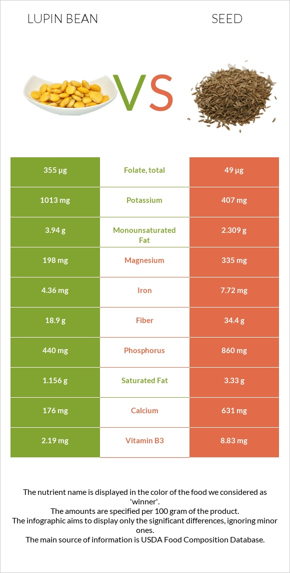 Lupin Bean vs Seed infographic