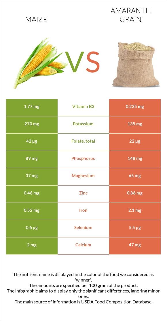 Maize vs Amaranth grain infographic