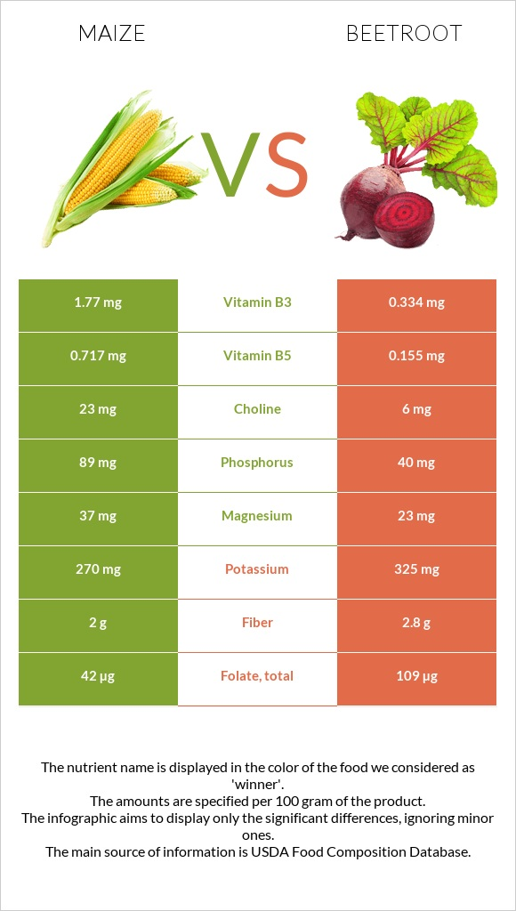 Maize vs Beetroot infographic