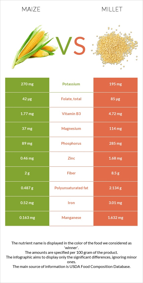 Maize vs Millet infographic