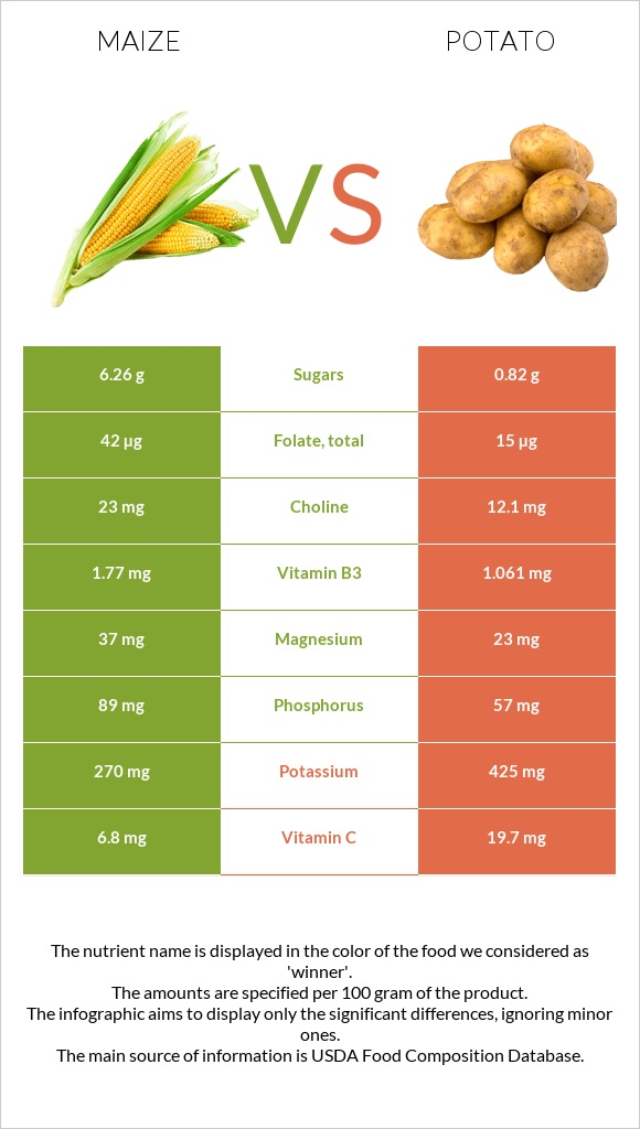 Maize vs Potato infographic