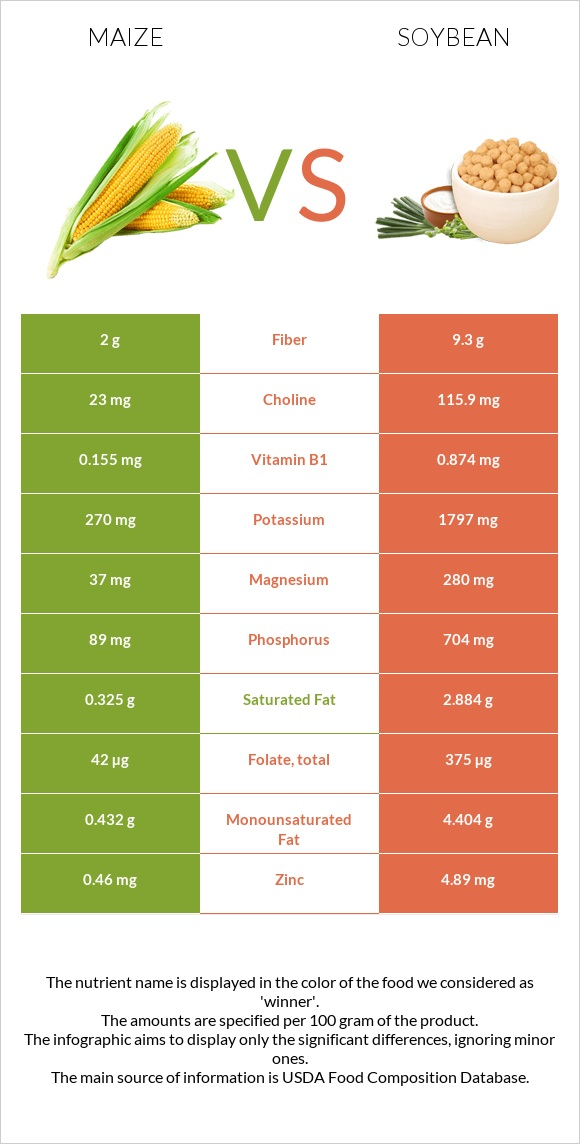 Maize vs Soybean infographic