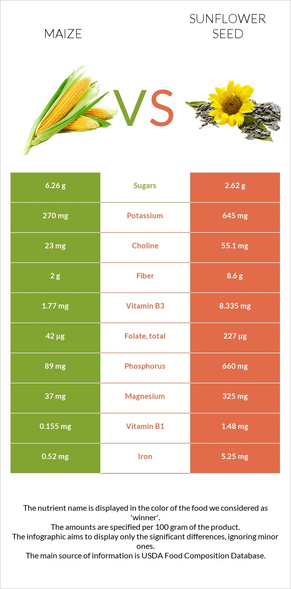 Maize vs Sunflower seed infographic