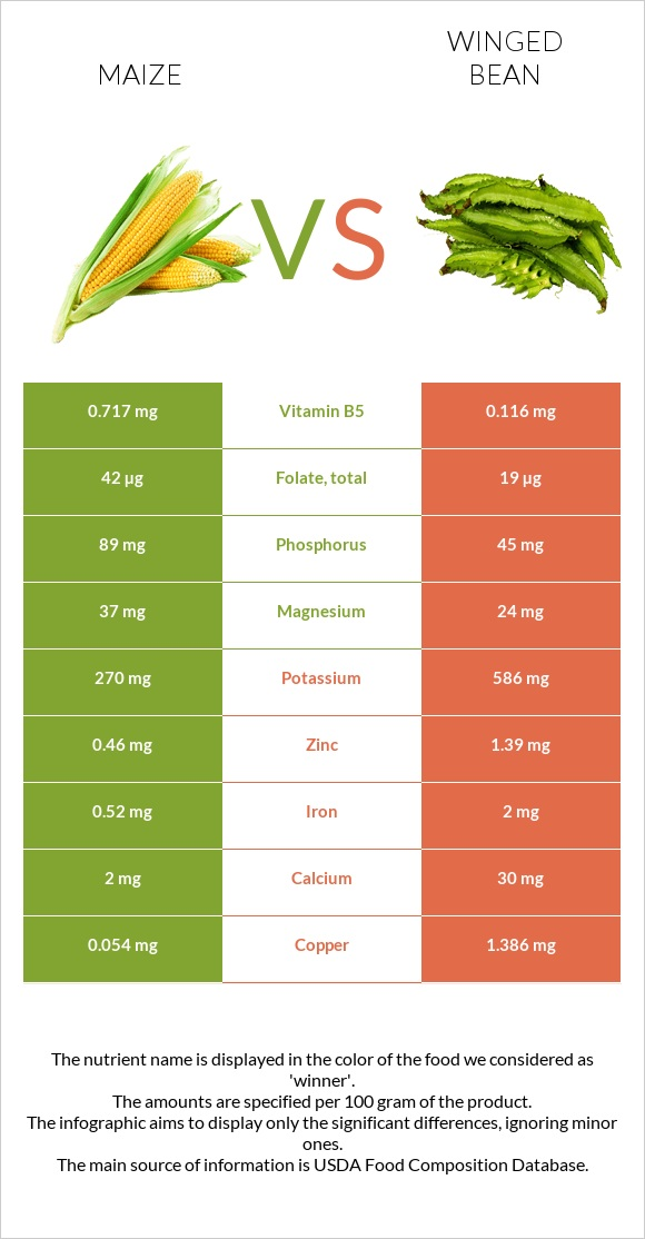 Maize vs Winged bean infographic