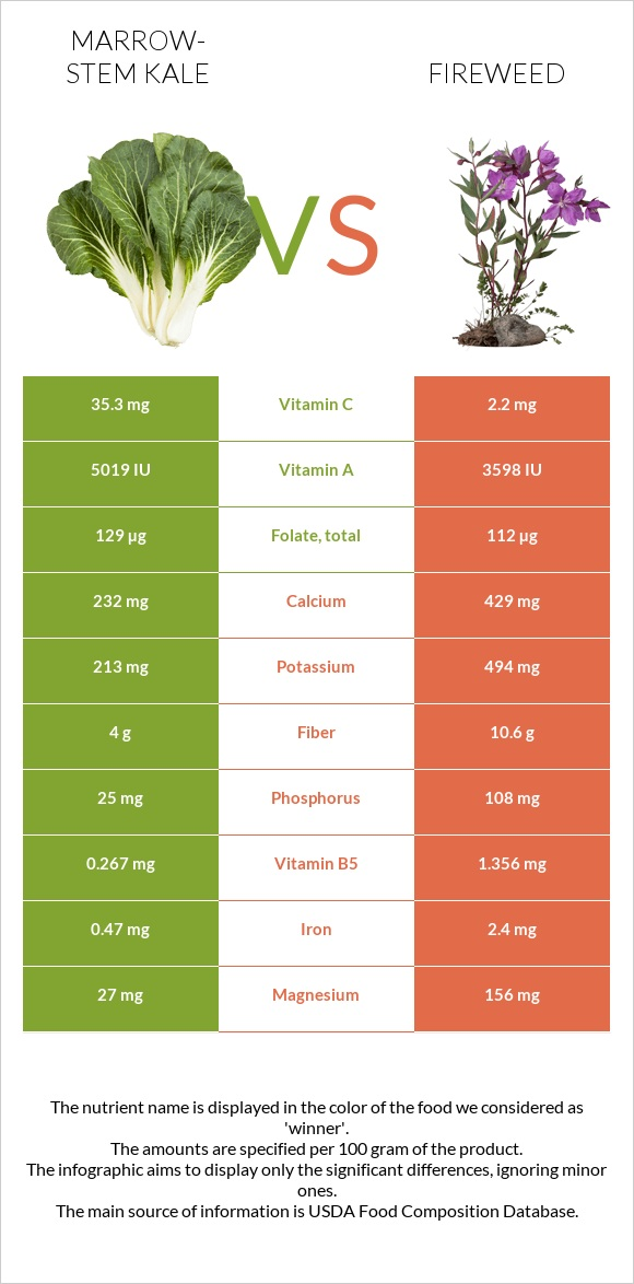 Marrow-stem Kale vs Fireweed infographic