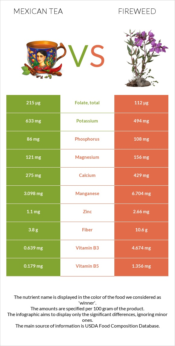 Mexican tea vs Fireweed infographic