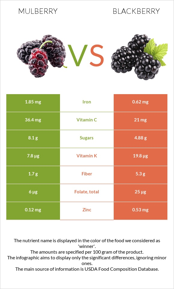 Mulberry vs Blackberry infographic