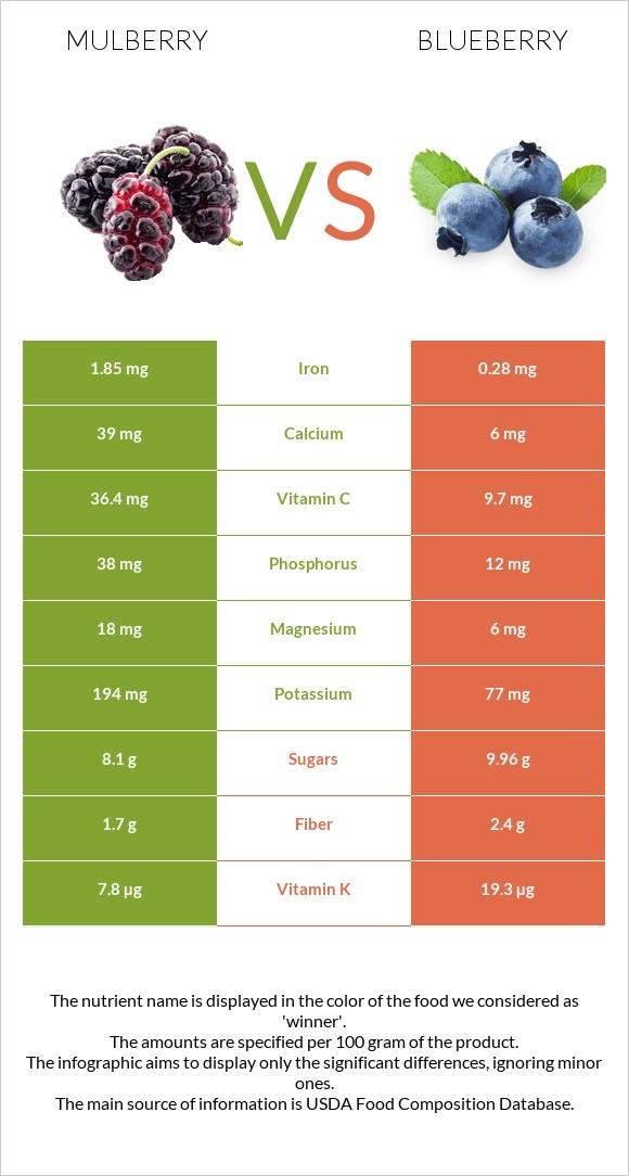 Mulberry vs Blueberry infographic