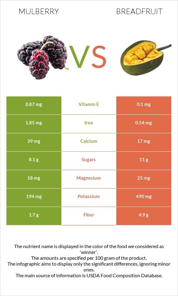 Mulberry vs Breadfruit infographic