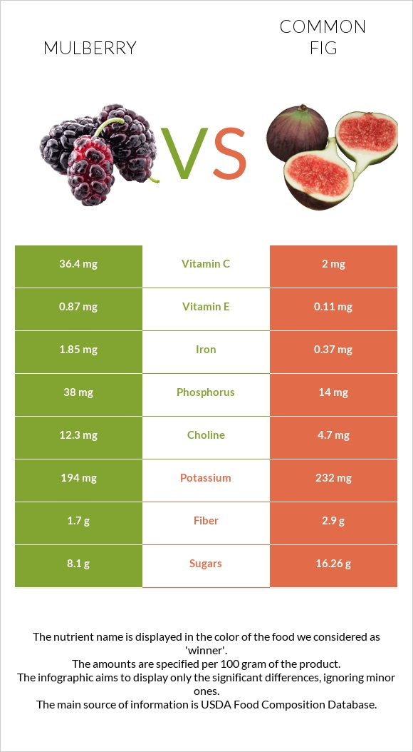 Mulberry vs Common fig infographic