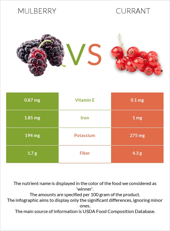 Mulberry vs Currant infographic