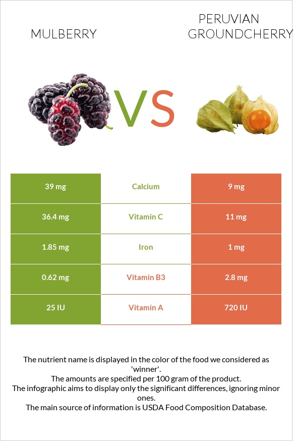 Mulberry vs Peruvian groundcherry infographic