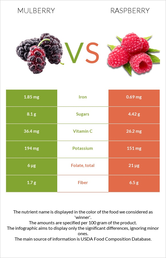 Mulberry vs Raspberry infographic