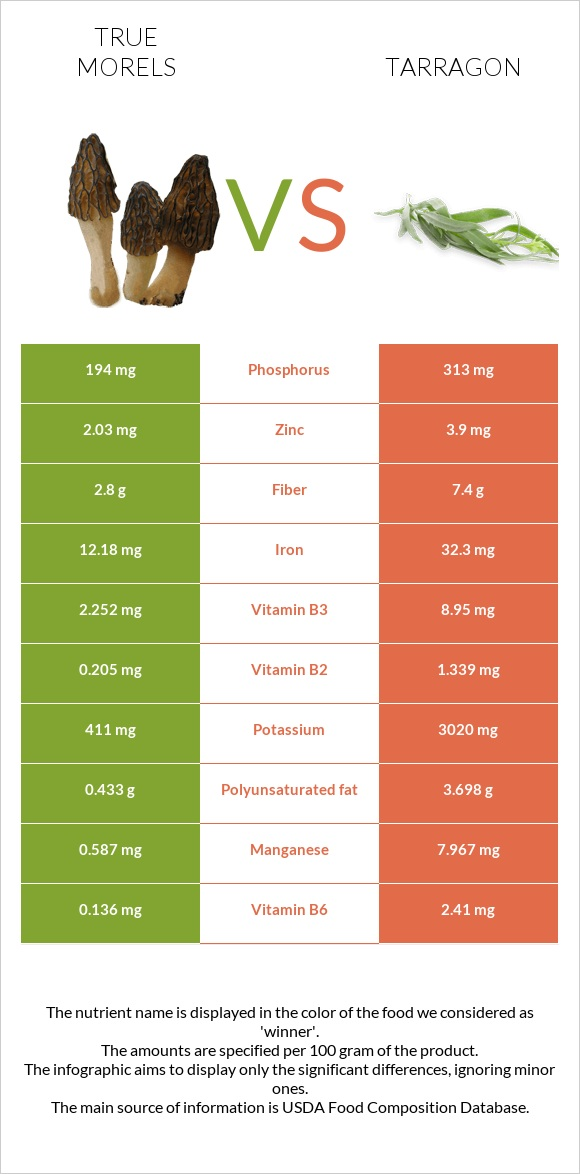 True morels vs Tarragon infographic