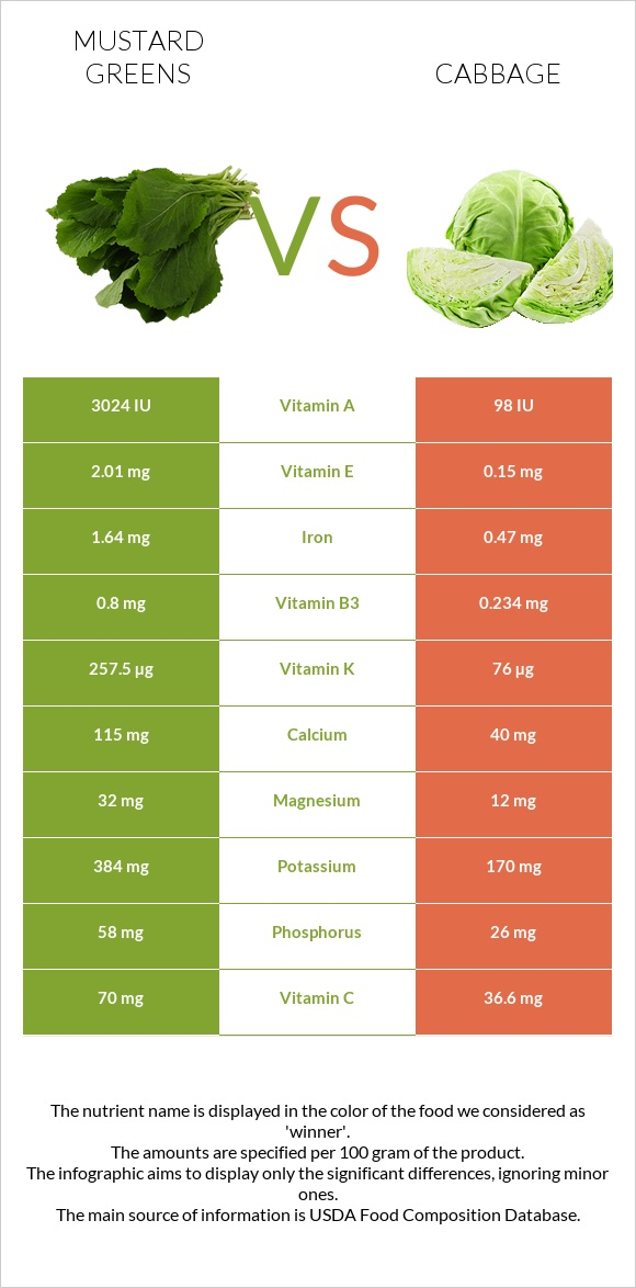 Mustard Greens vs Cabbage infographic