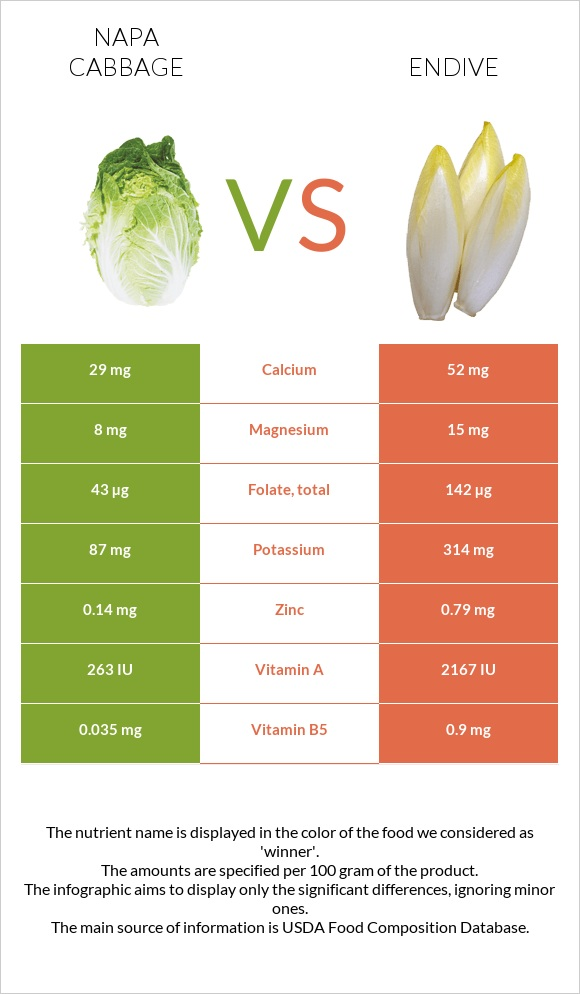 Napa cabbage vs Endive infographic