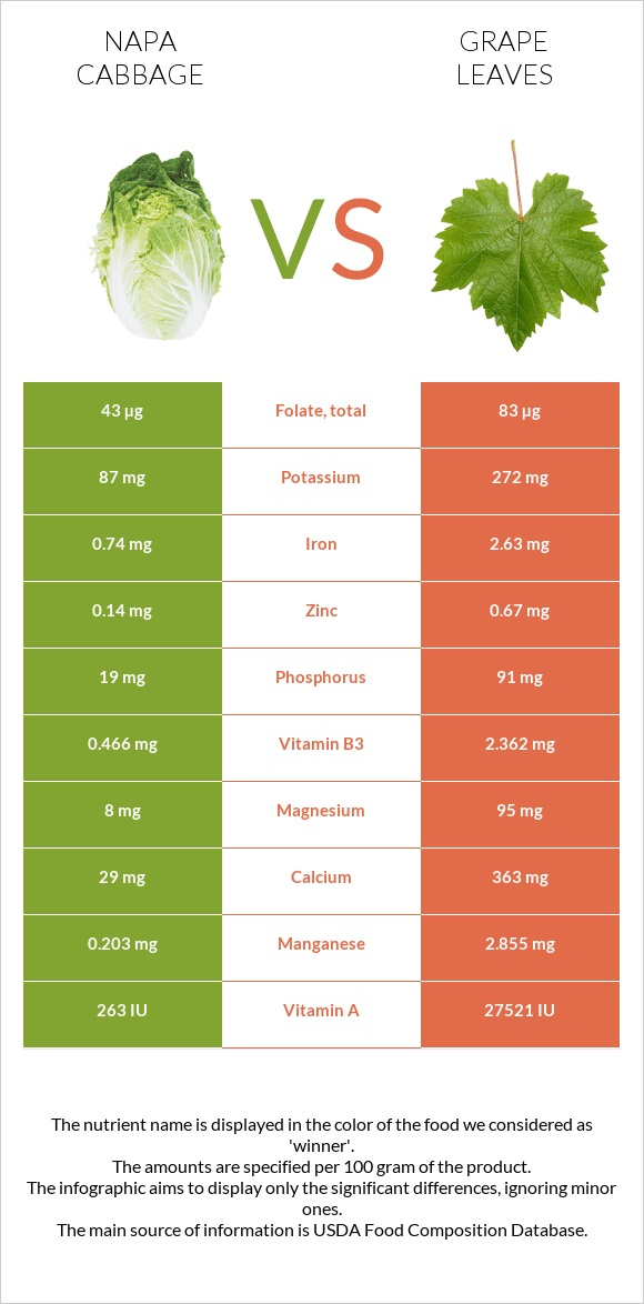 Napa cabbage vs Grape leaves infographic