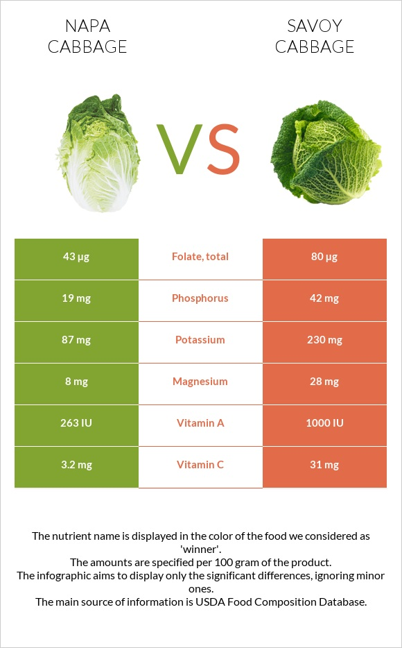 Napa cabbage vs Savoy cabbage infographic