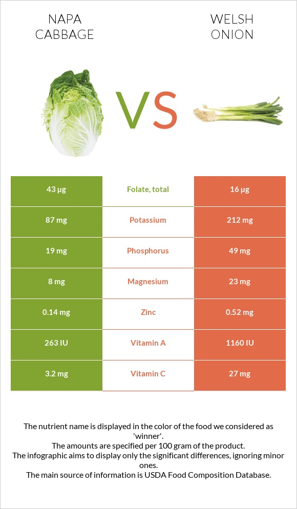 Napa cabbage vs Welsh onion infographic