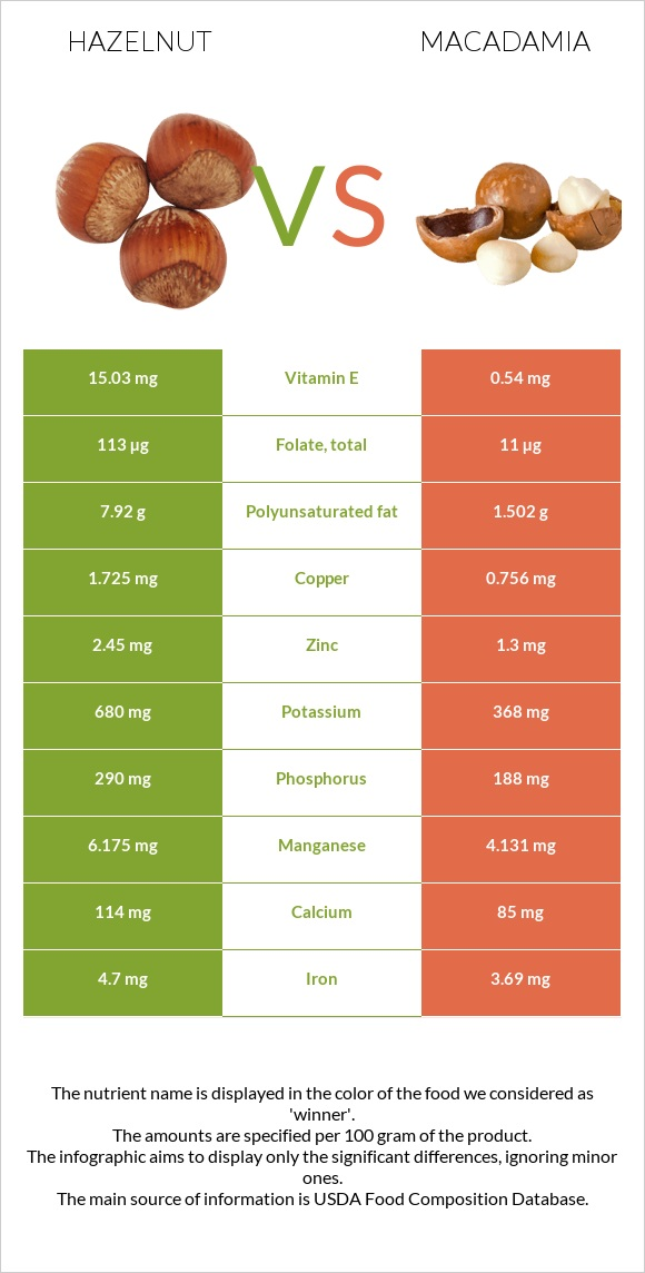 Hazelnut vs Macadamia infographic