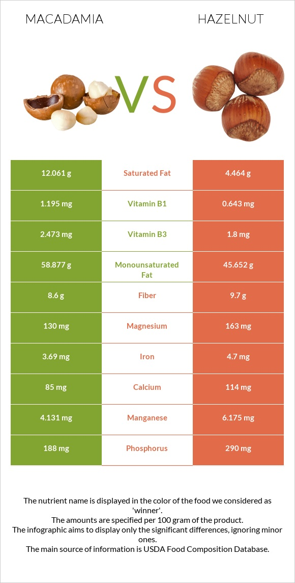 Macadamia vs Hazelnut infographic