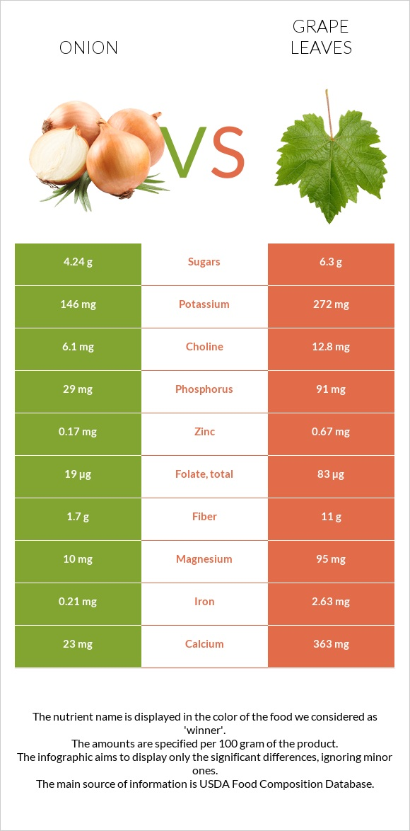 Onion vs Grape leaves infographic
