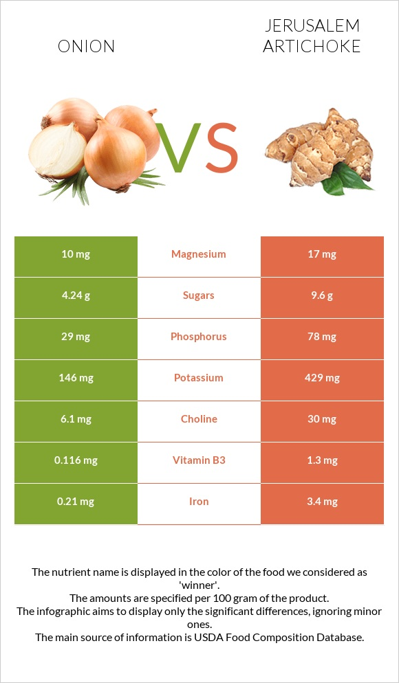 Onion vs Jerusalem artichoke infographic