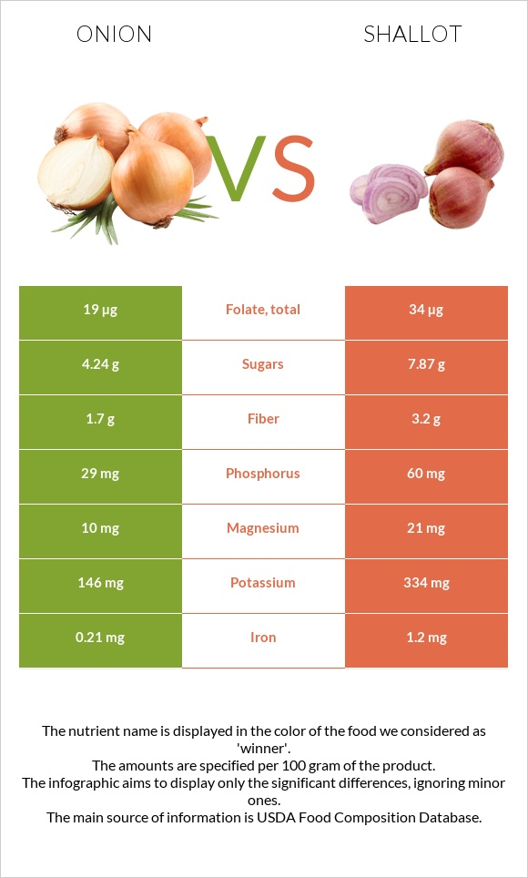 Onion vs Shallot infographic