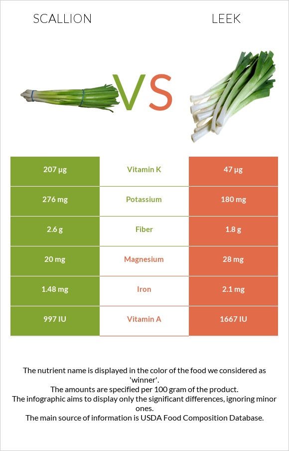 Scallion vs Leek infographic