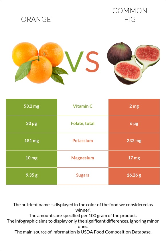 Orange vs Common fig infographic
