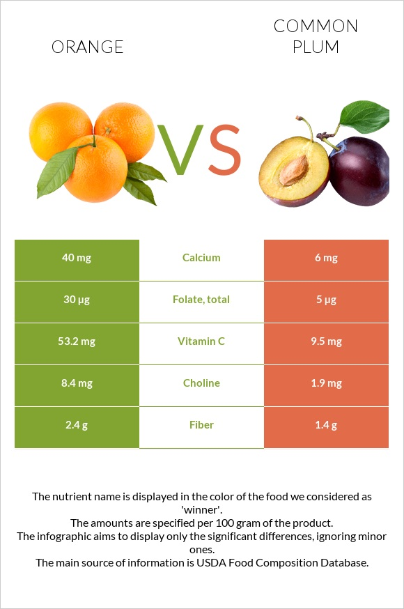 Orange vs Common plum infographic