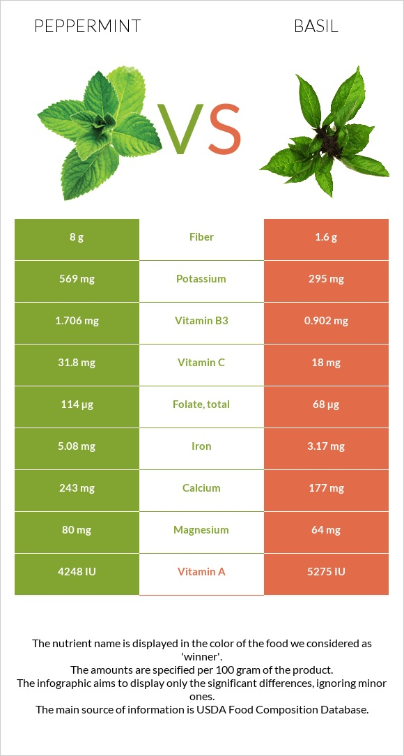 Peppermint vs Basil infographic