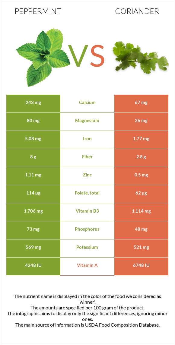 Peppermint vs Coriander infographic