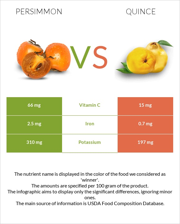 Persimmon vs Quince infographic