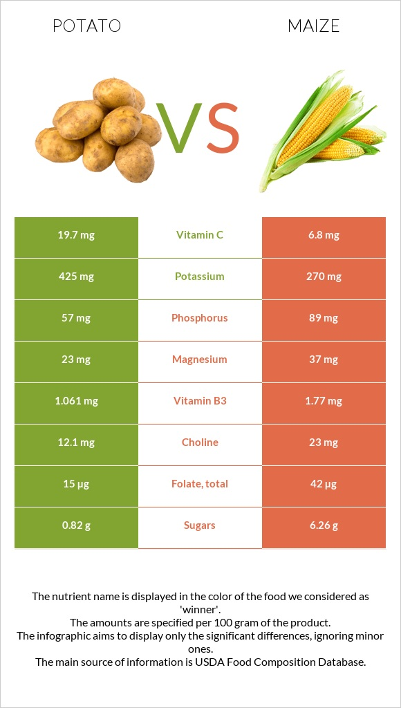 Potato vs Maize infographic